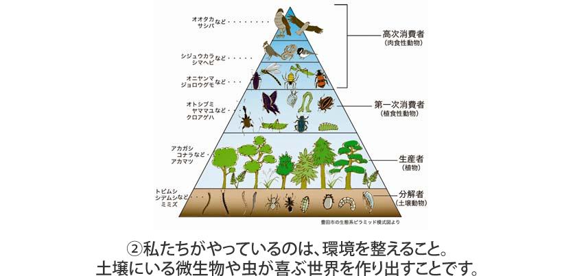 私たちがやっているのは、環境を整えること。土壌にいる微生物や虫が喜ぶ世界を作り出すことです