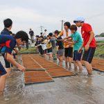 土遊びが精神に与える影響|村田自然栽培米ササニシキ
