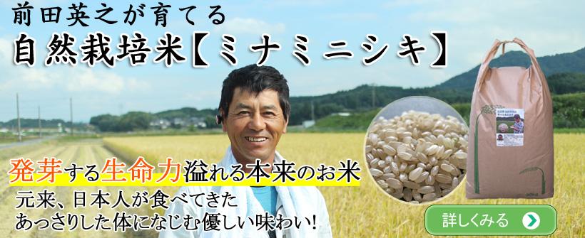 自然栽培米ミナミニシキ