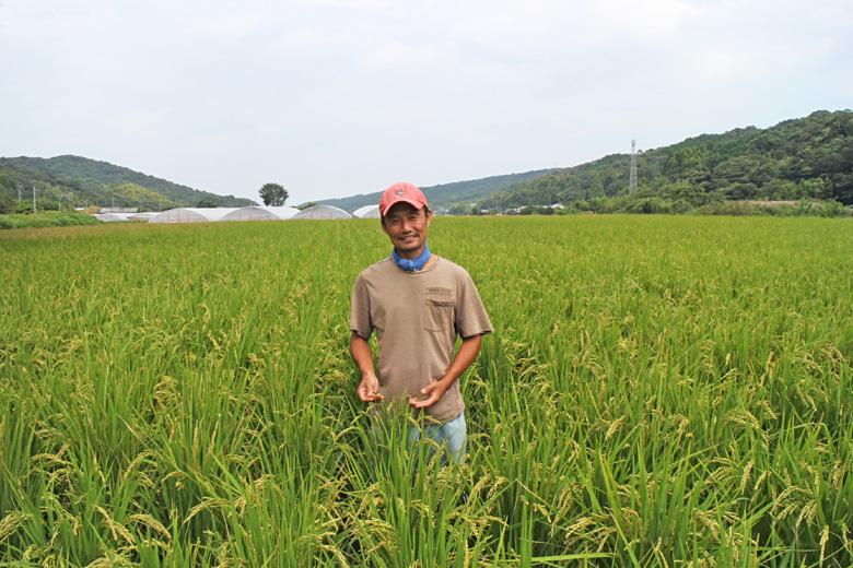 村田光貴の自然栽培米