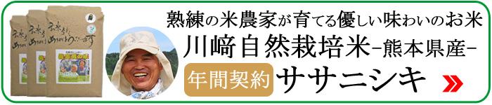 川﨑自然栽培米ササニシキ