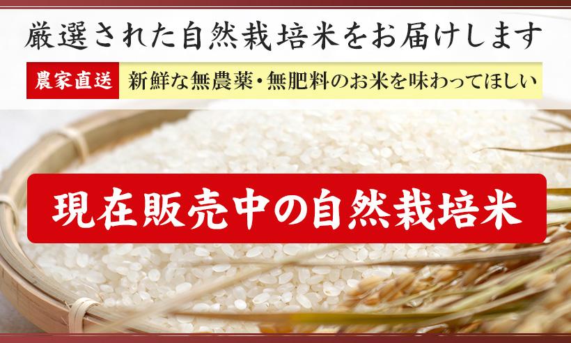 自然栽培米ご購入はこちら