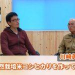 天草の自然栽培米農家川﨑さんが語る知られざる天草コシヒカリの歴史