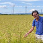 自然栽培米作り37年以上の稲本さんが八代で自然栽培を始めたきっかけとは?