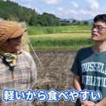 東の横綱ササニシキはなぜ減った?復活に人生をかけた若き自然栽培米農家