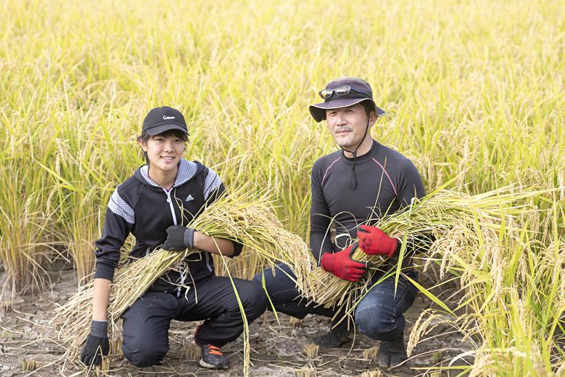 片山さんと収獲の稲
