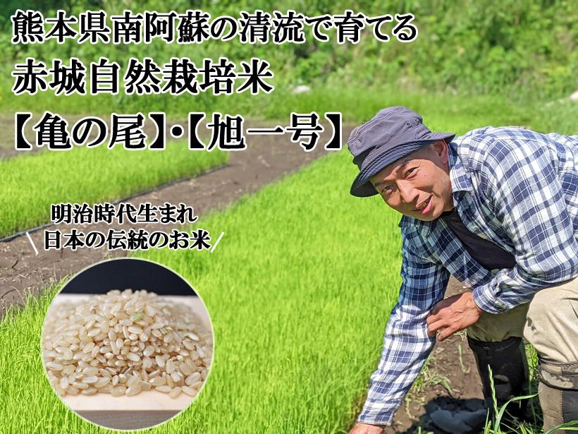 赤城自然栽培米トップ画像