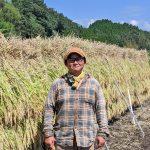 ササニシキ生産農家が減少した理由|希少な伝統の自然栽培米を日本に残す