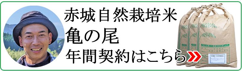 赤城自然栽培米亀の尾年間契約