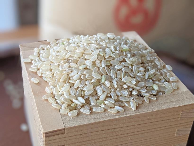 自然栽培米イセヒカリ