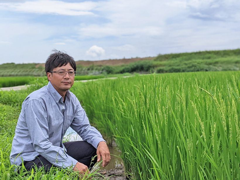 自然栽培米農家 楠田大伸