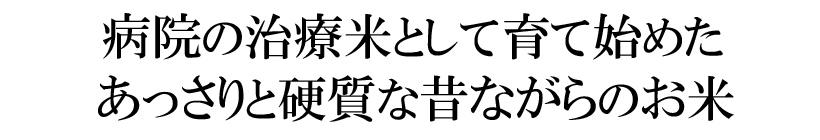 楠田大伸の自然栽培米イセヒカリ説明