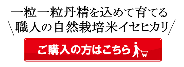 楠田大伸の自然栽培米イセヒカリはこちら